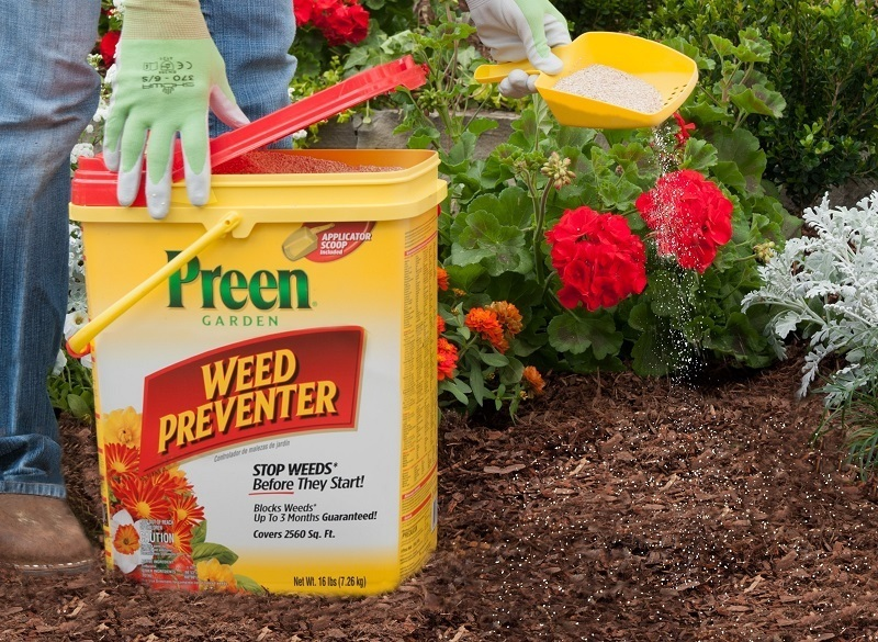 Preen Weed Killer Review