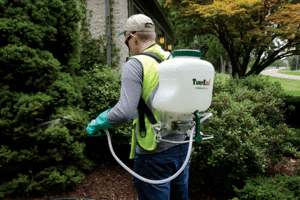 Man using a backpack sprayer to kill weeds.
