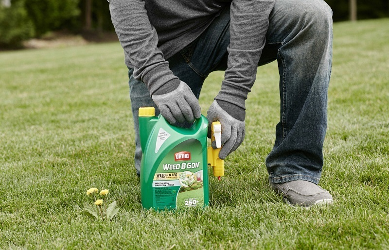 Choosing The Best Weed Killer In 2018