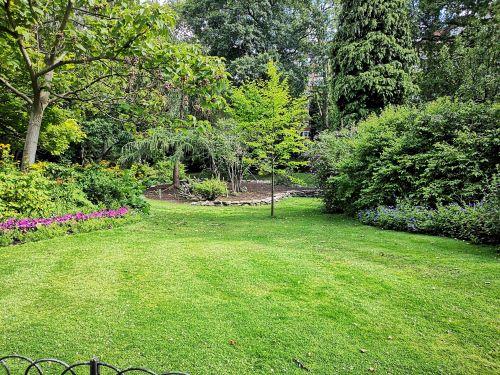 lawn aerator reviews