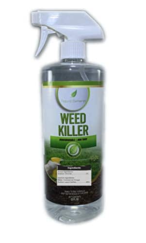 Natural Elements Weed Killer review