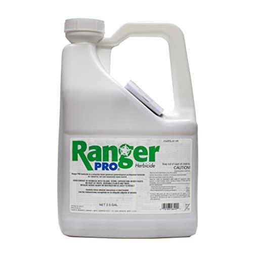 Ranger Pro review