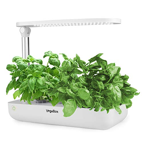 Vegebox Hydroponics Growing System review