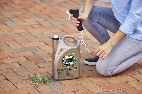 weed killer for driveway reviews