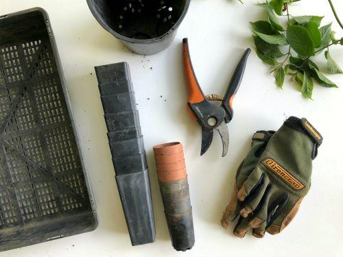 pruners for arthritic hands reviews